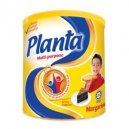 Planta 2.5Kg+